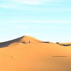 dunes désert erg Chegaga, Mhamid, Zagora, sud marocain