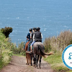 """PÁTIO is rewarded with the seal for """"Clean & Safe"""" business from the Azores Government."""
