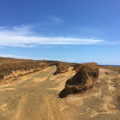 Green Sand Beach Trailhead