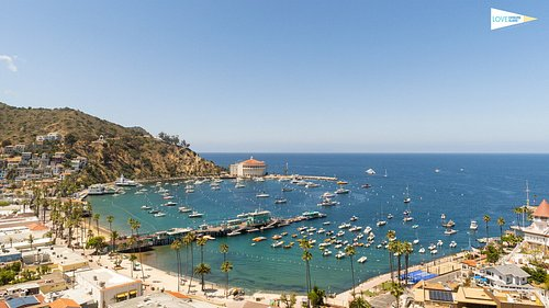 Catalina Island is Now Open!