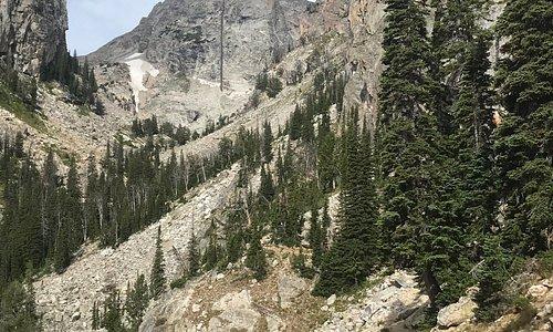 Lupine Meadows Trailhead