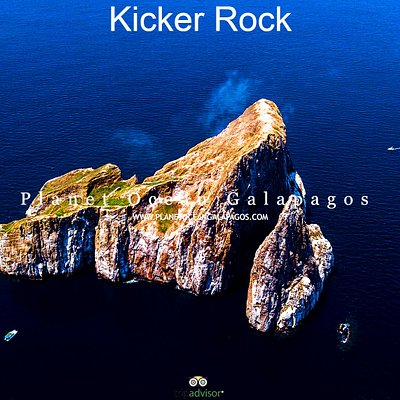 Kicker Rock - Leon Dormido is located in the Capital of Galapagos SAN CRISTOBAL, number one place in Galapagos for Diving and Snorkel with Planet Ocean an experience you should not miss.