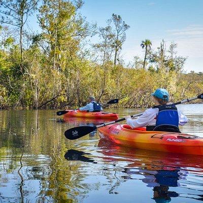 Guided kayak tour.