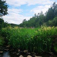 Strinesdale reservoir