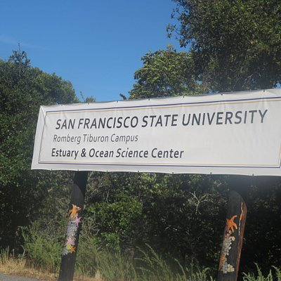 Estuary and Ocean Science Center, San Francisco State University
