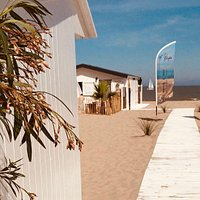Bar of Baja Beach & Bar