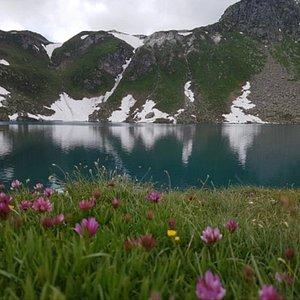 Lago Srurer