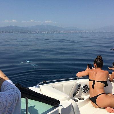 We enjoy the presence of dolphins, they love to come close to the boat to play and pry. Disfrutamos de la presencia de los delfines, les encanta acercarse al barco a curiosear.