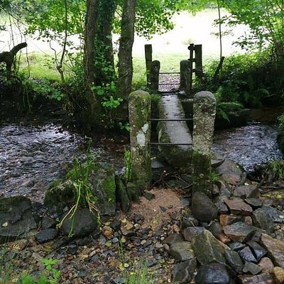 Blisland  to Lavethan Wood photòs