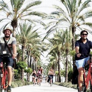 biketour valencia