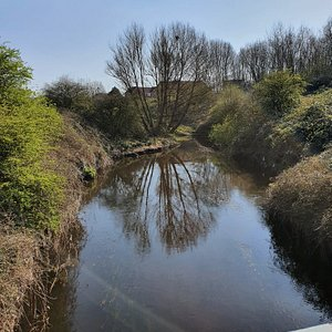 River Alt viewed from Lime Tree Woods