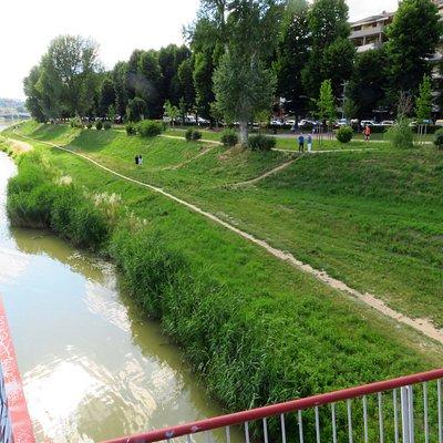 Le verdi sponde dell'Arno nei pressi del ponte