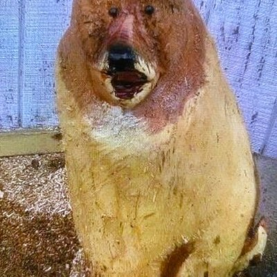 Professionally carved bear