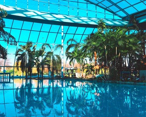 Große Lagune im Palmenparadies