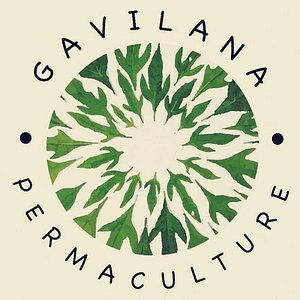La Gavilana Herbs & Art