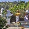 """""""DIAS"""" Beekeeping"""