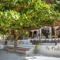 Find your spot under the iconic almond tree.