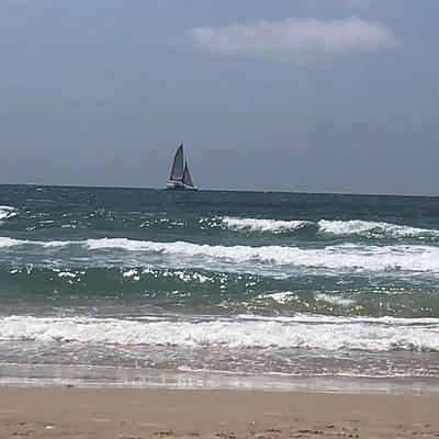 חוף תל ברוך תל אביב -צהריים