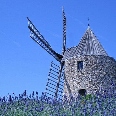 Le Moulin St Roch à Grimaud, symbole des moulins en Provence