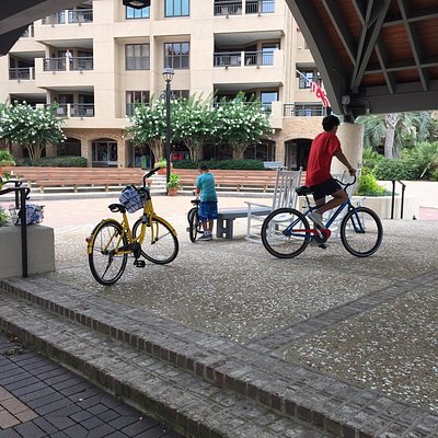 All bikes had kickstands for our stops