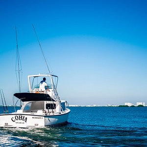 Our Bertram 31' fishing boats are the ideal complement to your skill. Equipped with two fishing seats and four lines, out & down rigger, fish finder, stereo, radio VHS, GPS, Safety equipment and more. Includes: Captain, Tackle, Mate, Bait & Gear, soft drinks, beer, fishing license and more