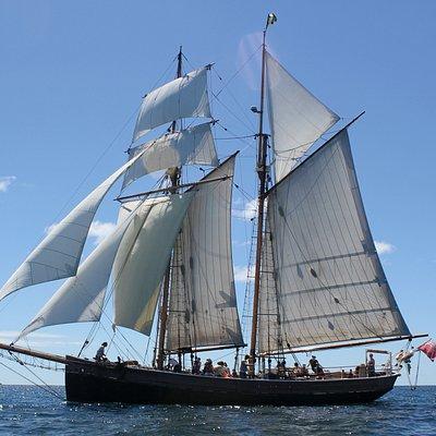 Day sail under full sail
