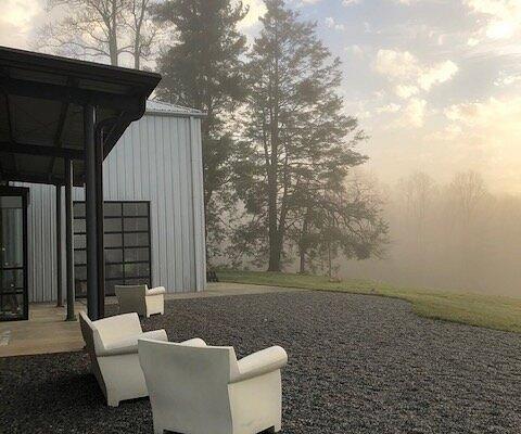 Early morning fog over the vineyard.