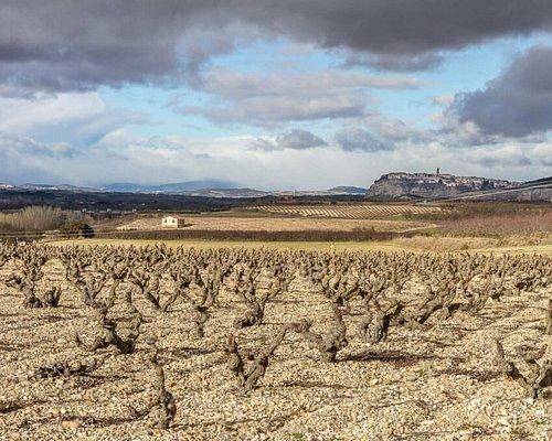 Bodegas Alconde es un fiel reflejo de la riqueza vinícola de Navarra.