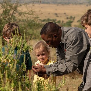 Our guide Isack Msuya explaining the natural world to some of our youngest guests.