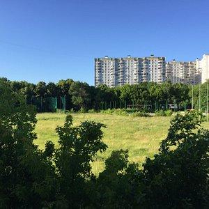 Вид на поле с трибуны