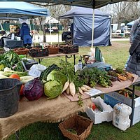 View across some produce stalls