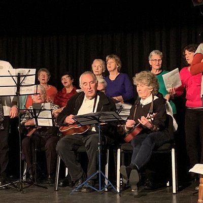 S.O.U.P. (Sounds Orchestral Ukulele Players and The Picton Belles at Matariki Stars, July 2020