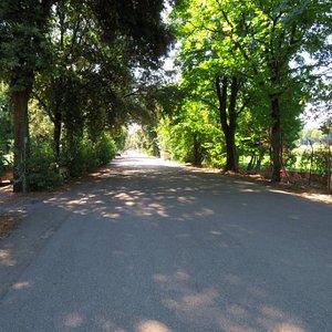La lunga striscia asfaltata del viale Visarno