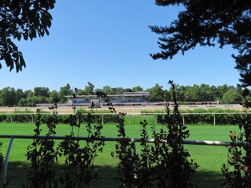 Vista dell'ippodromo dal viale Visarno