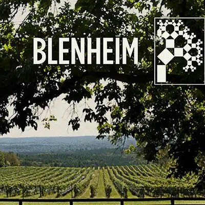 Overlooking our vineyards