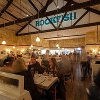 Rockfish Poole  ( Summer 2019)
