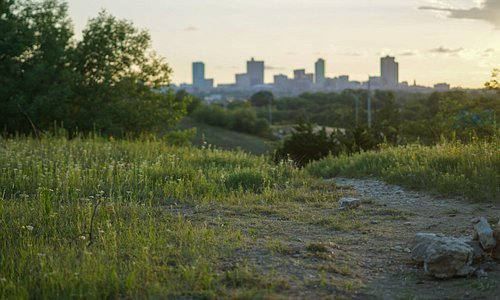 Explore the Tandy Hills Natural Area, a natural escape just minutes from Downtown Fort Worth.