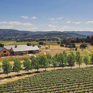 Our stunning winery, tasting room and vineyard