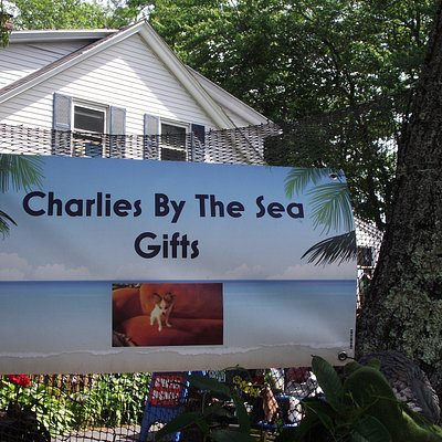 ME - WELLS - RENEE'S - BANNER FOR CHARLIES