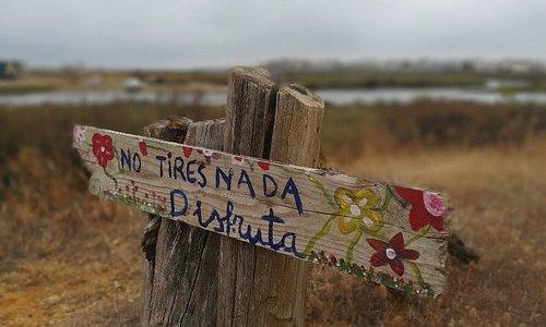 Salinas Del Duque