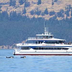 The Island Explorer 5, the most comfortable and spacious vessel in the Pacific Northwest.