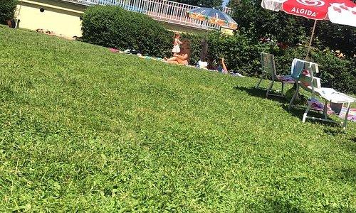 Koupaliště Hluboká nad Vltavou