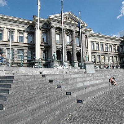 L'Aquarium-Muséum Universitaire de Liège.