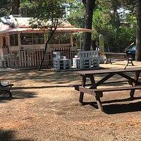 Il chiosco con i banchetti attorno, in un bel parco sotto i pini marittimi