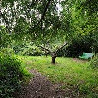 St Aiden*s Park Nature Reserve.