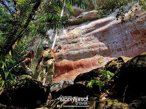 Ven y disfruta de la mejor experiencia con la Naturaleza . ¡San José del Guaviare, un destino turístico  por descubrir!