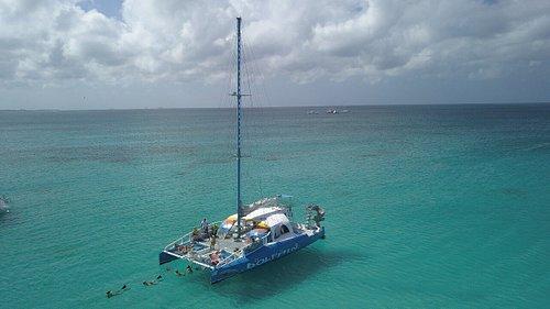 Catamaran Dolphin snorkeling cruise