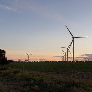 Wattle Point Wind Farm  Edithburgh SA  wind farm at sunset taken from along the road