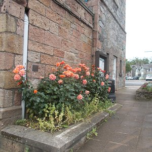 Flowers at Dufftown Clock Tower