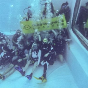 Some impressions about Diving Shanghai.